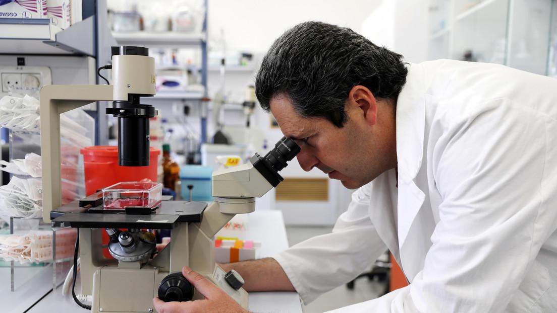 Nestlé pretende ampliar su abanico de productos con carne cultivada en laboratorio a base de células animales