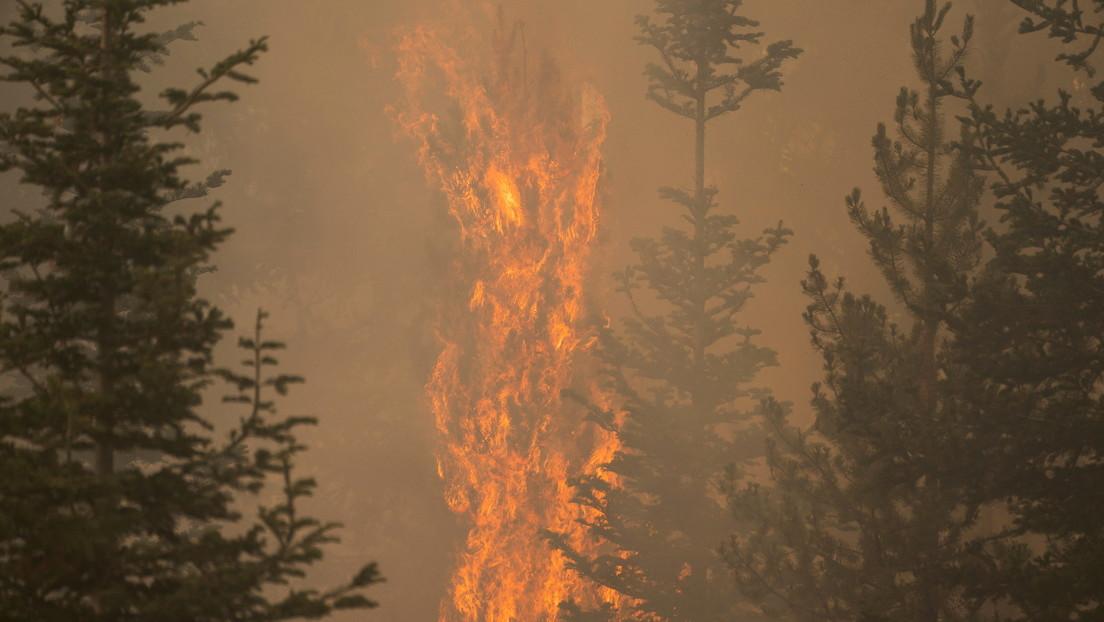 Incendio en EE.UU. alcanzó dimensiones tan grandes que incluso genera sus propias condiciones climáticas