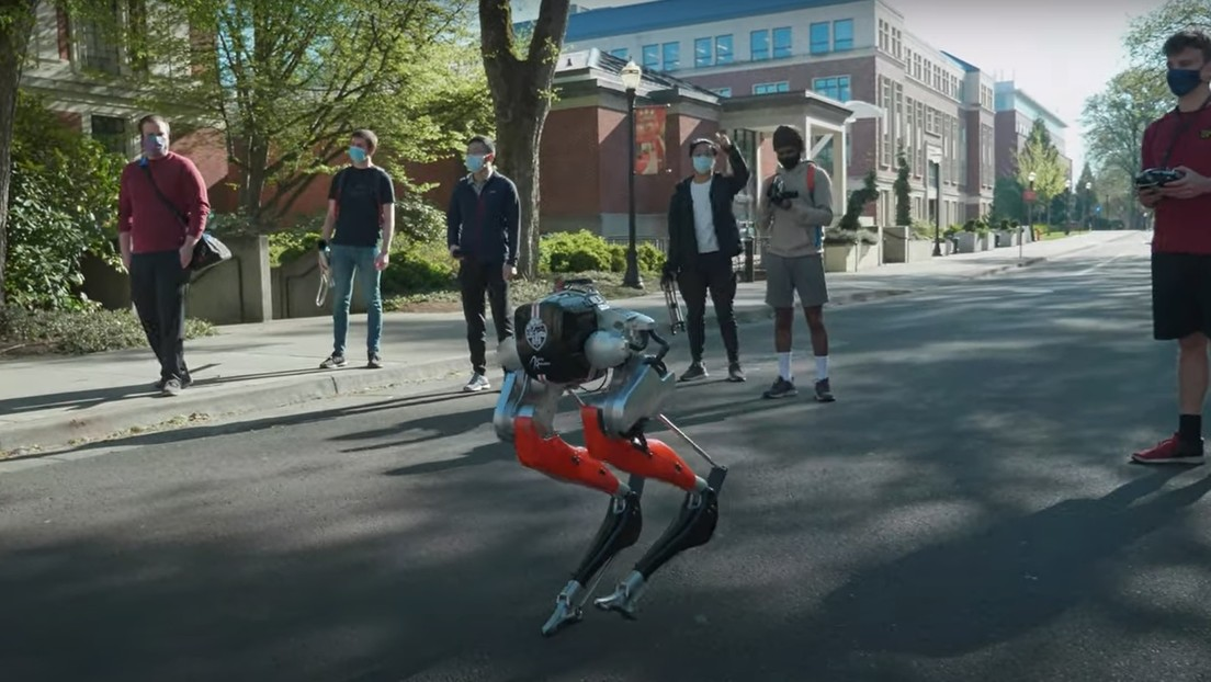 VIDEO: Robot bípedo 'ciego' recorre por primera vez 5 kilómetros en EE.UU.
