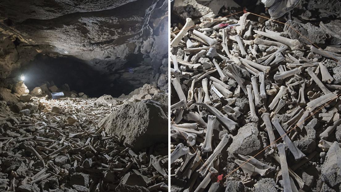 Descubren decenas de miles de huesos, incluidos restos humanos, en una caverna habitada por hienas durante los últimos 7.000 años