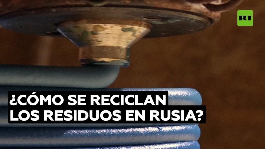 Reciclaje en San Petersburgo: cómo se colabora desde Rusia para salvar el planeta