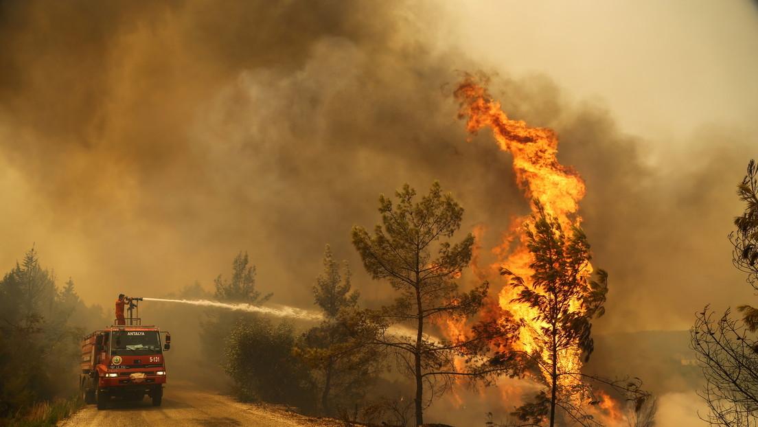 FOTOS, VIDEO: Turquía evacúa la ciudad turística de Bodrum por incendios forestales, y Erdogan admite que serían provocados