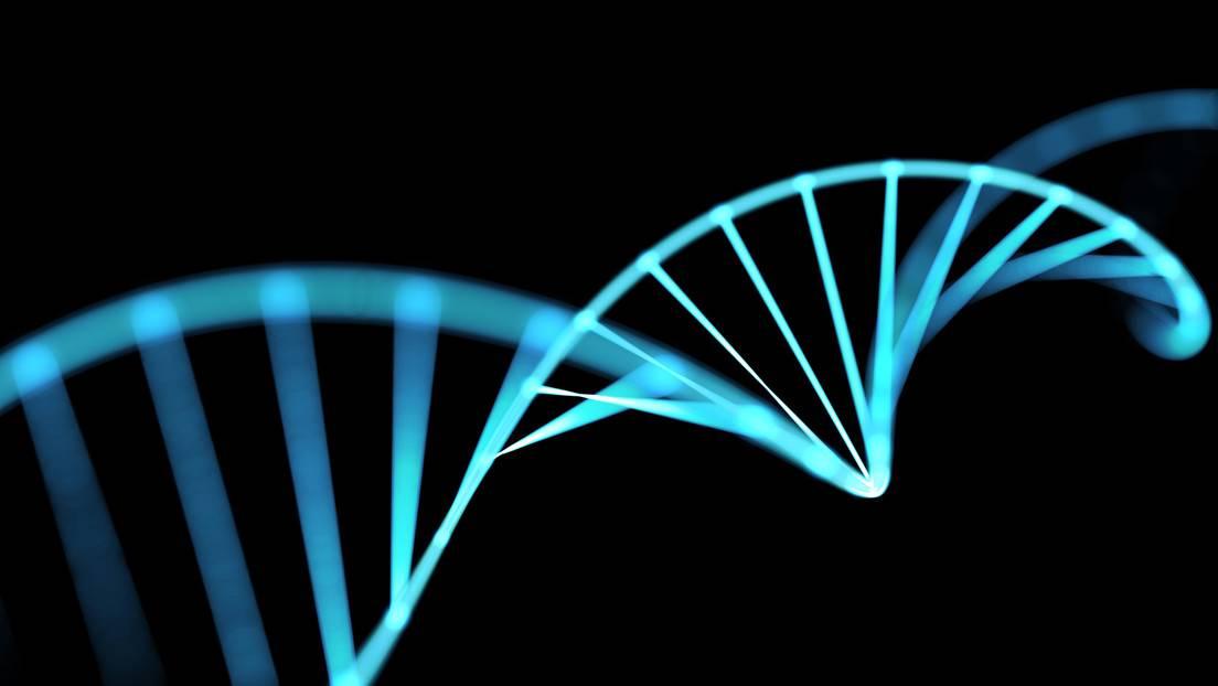 Las cadenas de ADN / Imagen ilustrativa.