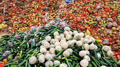 Reporte revela que casi el 40 % de los alimentos producidos a nivel global no llegan a ser consumidos