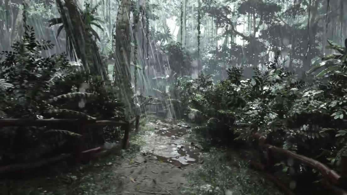 VIDEO: Así es la jungla bajo la lluvia en resolución 8K sobre la base del motor de juego Unreal Engine 5