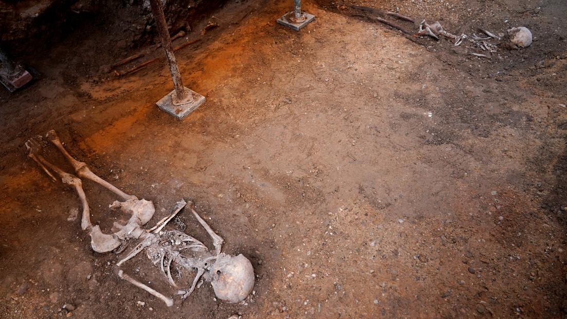 Encuentran al sur de España varios cráneos y mandíbulas humanas de más de 3.000 años de antigüedad (FOTO)