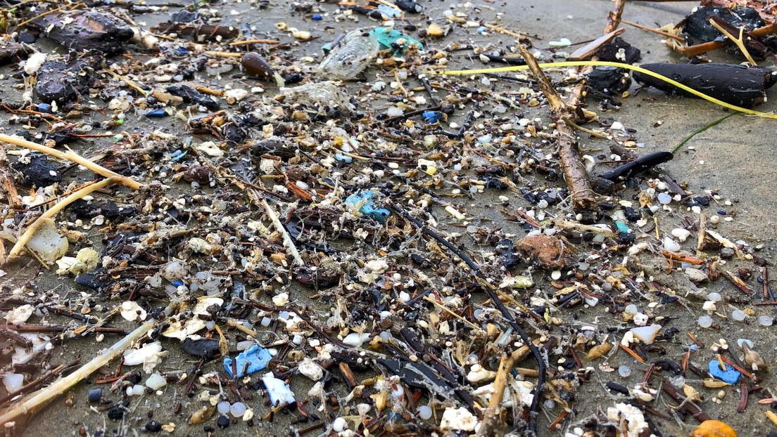 Revelan un efecto perturbador de los microplásticos en la salud humana