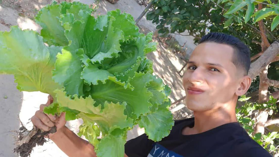 """El 'tiktoker' venezolano que se hizo viral enseñando a sembrar vegetales en casa y defiende """"lo bonito y honrado"""" del campo"""