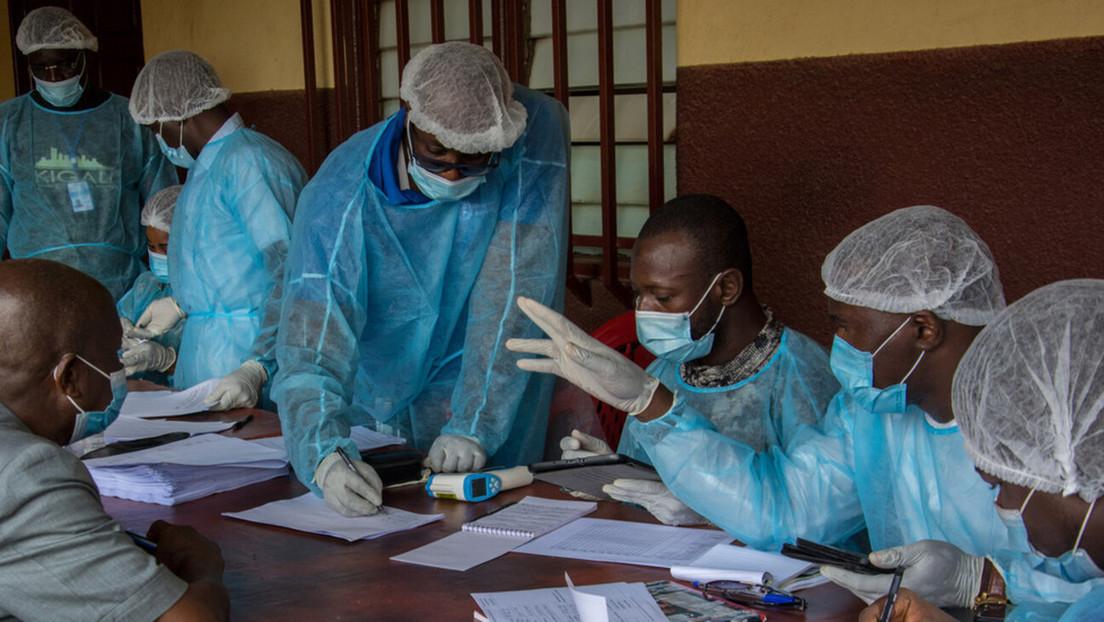 Detectan por primera vez en África occidental un virus altamente infeccioso similar al ébola