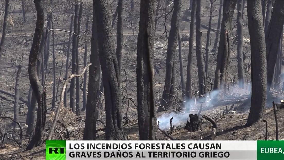 Los incendios forestales que azotan el territorio griego causan graves daños en la isla de Ubea