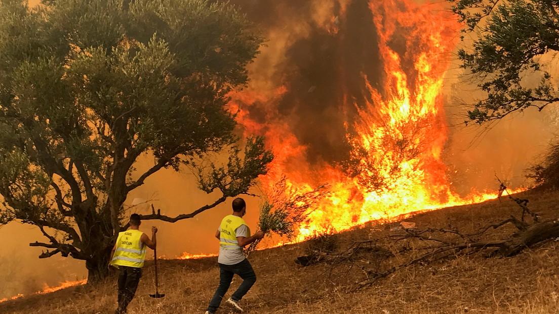 Arrestan a 22 personas en relación con los masivos incendios en Argelia