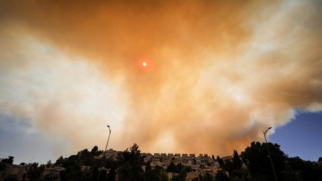 Israel se enfrenta al mayor incendio forestal en años (VIDEOS)