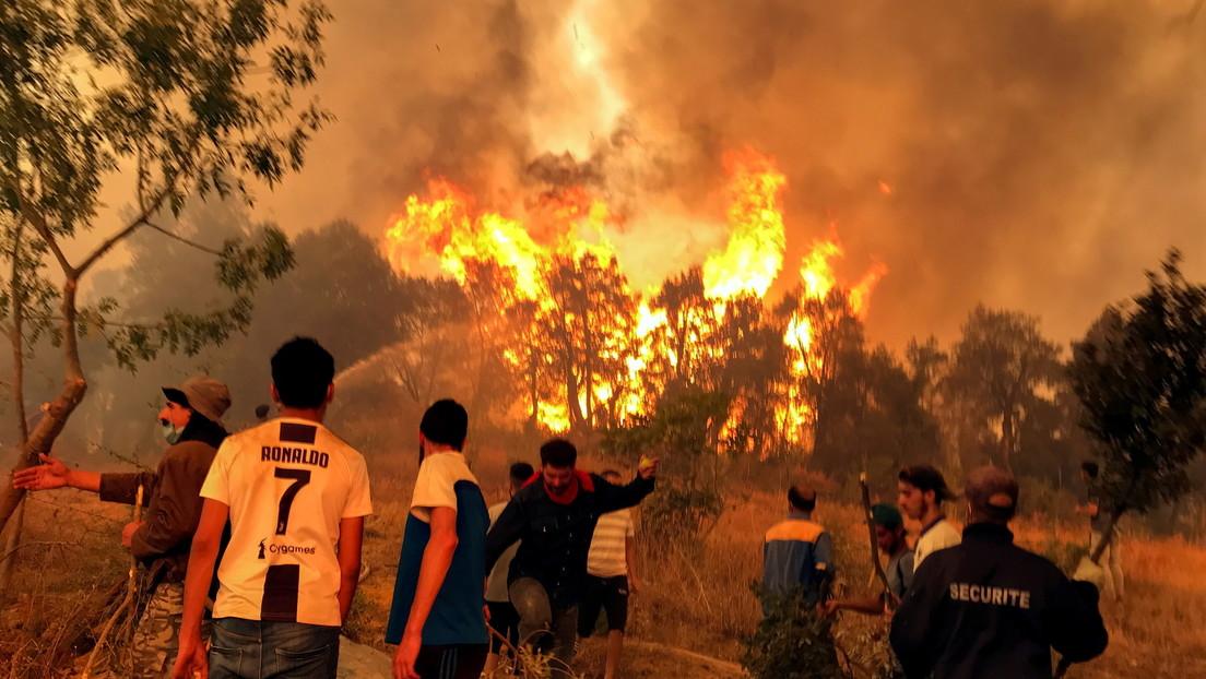 Detienen a 61 personas tras el linchamiento de un hombre acusado falsamente de provocar incendios forestales en Argelia