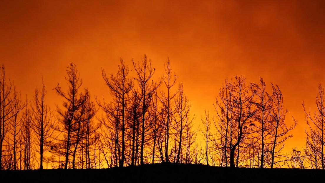 """""""El clima está jodido"""": un famoso inversionista de riesgo sugiere apostar por los fondos en tecnologías verdes"""