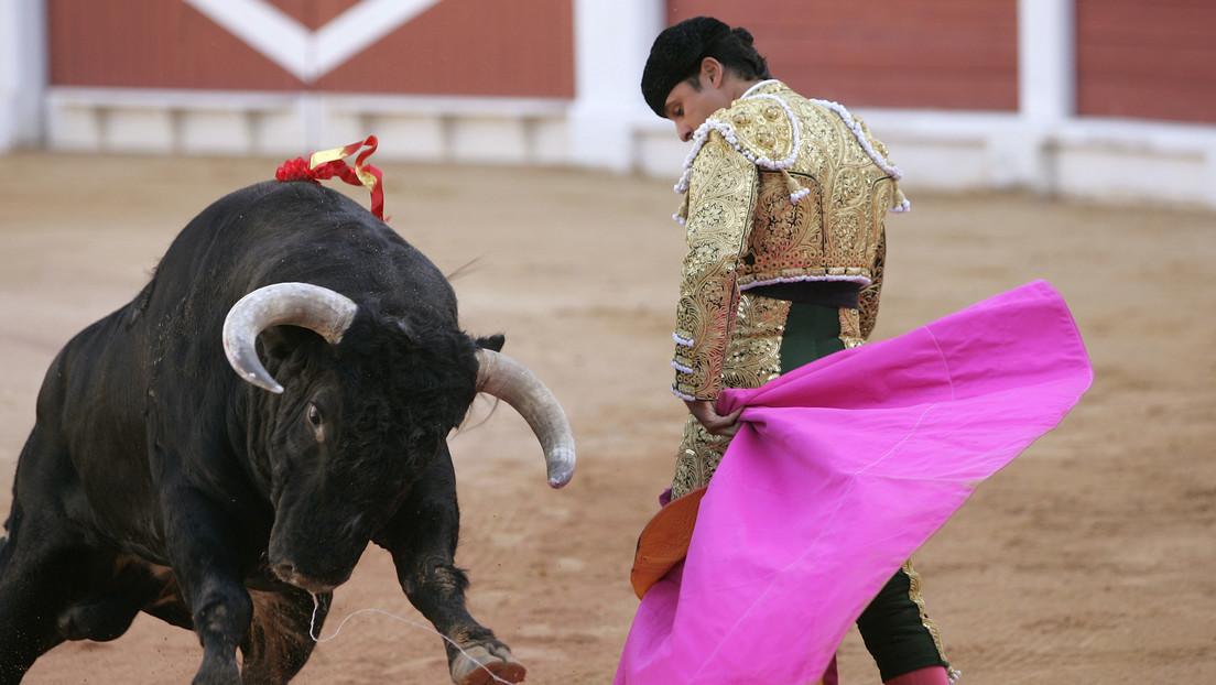 Una ciudad española prohíbe las fiestas taurinas tras una polémica por dos toros llamados 'Feminista' y 'Nigeriano'