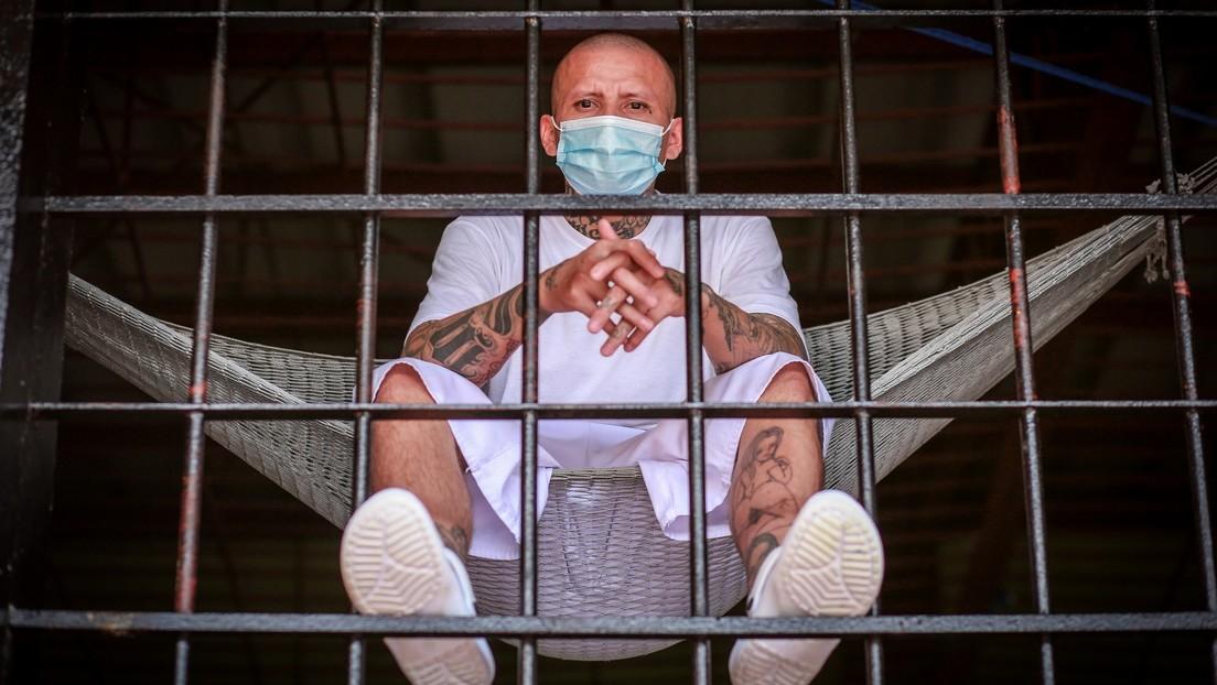 Las razones que hay detrás del brusco descenso en la detención de pandilleros de la MS-13 en El Salvador