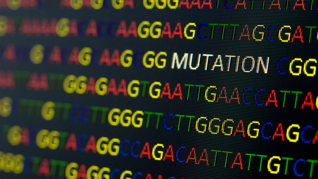 Estudio revela que el SARS-CoV-2 muta casi una vez a la semana