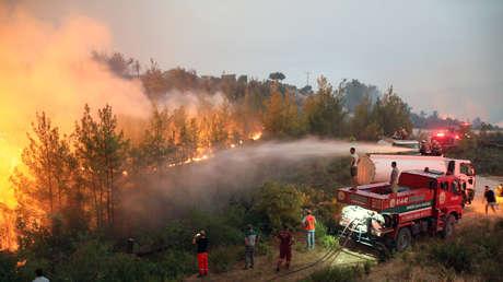 """""""Nuestros pulmones arden"""": la desesperada súplica de ayuda del alcalde de una ciudad turca 'sitiada' por incendios forestales"""