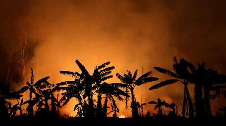 Récord de grandes incendios en la Amazonía con 287 fuegos en 2021