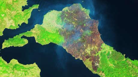 Imágenes por satélite muestran la magnitud de los incendios forestales en Grecia, 5 veces más fuertes que en años anteriores