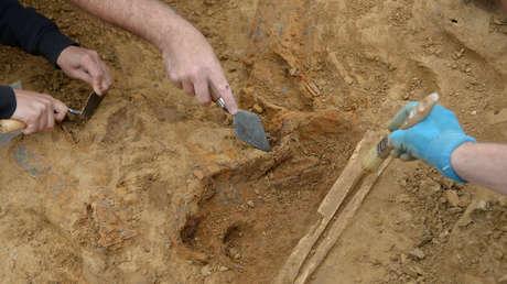 Arqueólogos irlandeses encuentran en un pantano una escultura pagana de madera de 1.600 años de antigüedad (FOTOS)