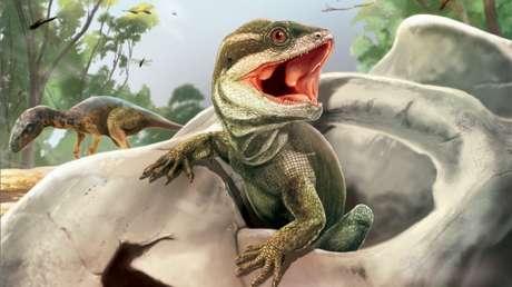"""Hallan en Argentina al """"abuelo de los lagartos"""", un reptil que convivió con los dinosaurios hace 230 millones de años"""