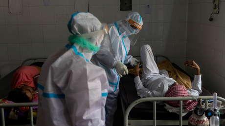 Identifican la posible causa del reciente brote de una fiebre viral mortal en la India
