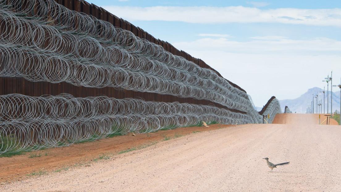 """El autor que captó a un correcaminos """"bloqueado"""" en el muro fronterizo entre México y EE.UU. gana el premio al Fotógrafo de Aves 2021"""