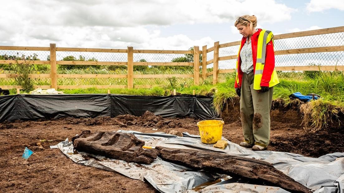Hallan un ídolo pagano de madera de 2,5 metros de alto y 1.600 años de antigüedad en un pantano 'sagrado' de Irlanda