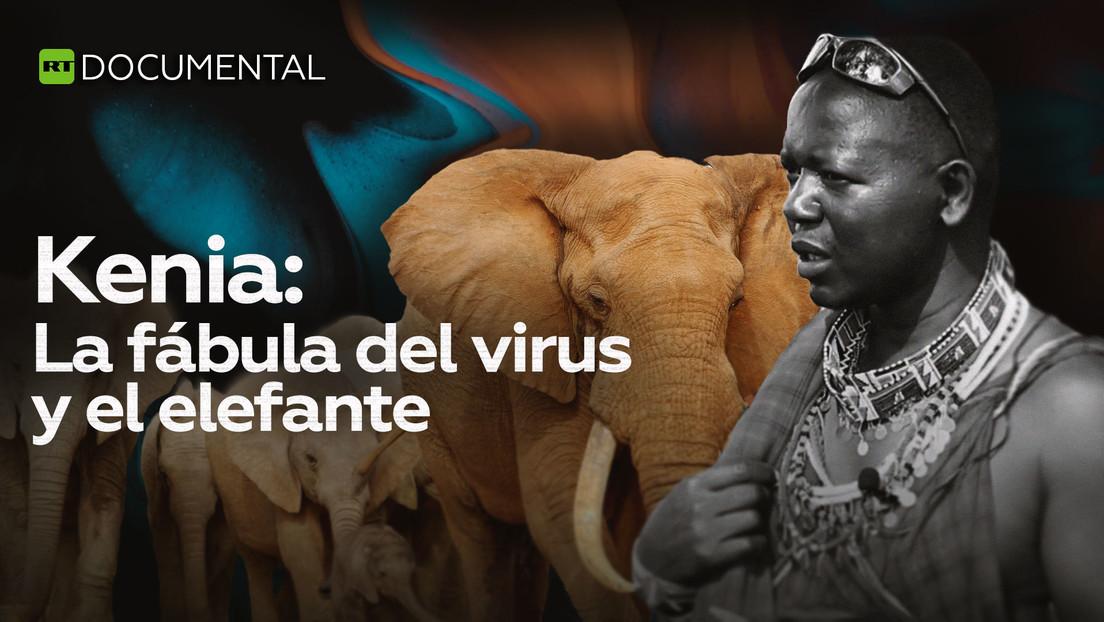 Kenia: La fábula del virus y el elefante