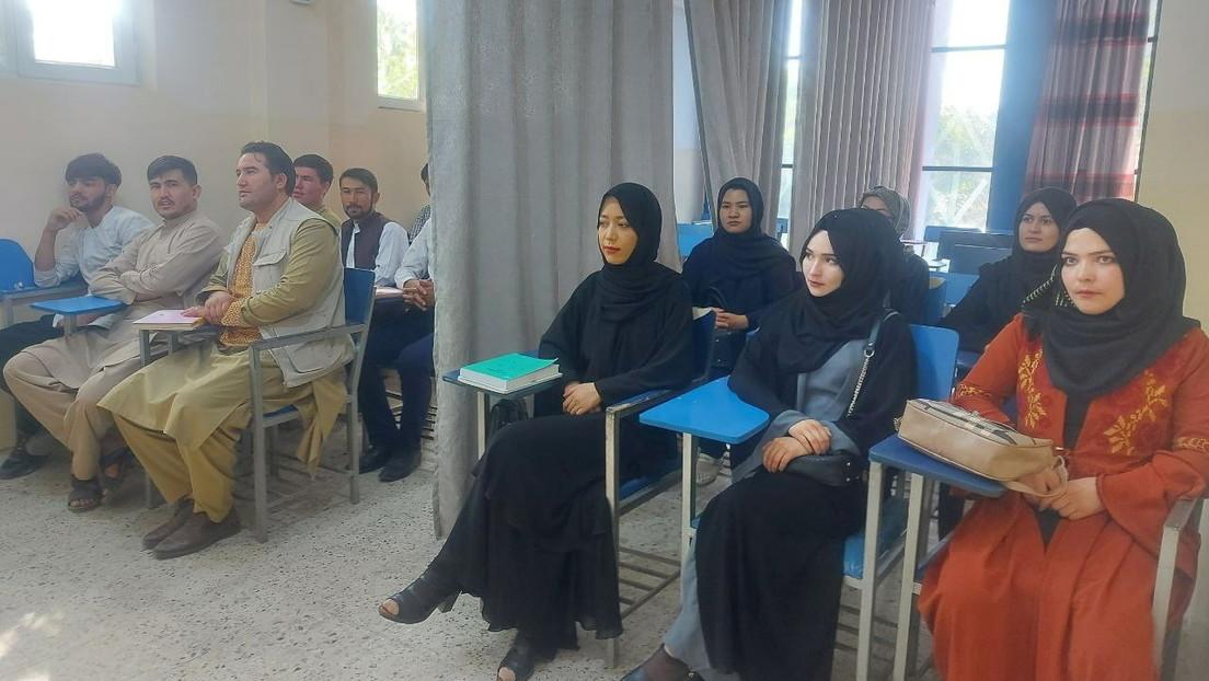 Fotos desde una universidad de Afganistán muestran a hombres y mujeres separados por una cortina para prevenir las clases mixtas