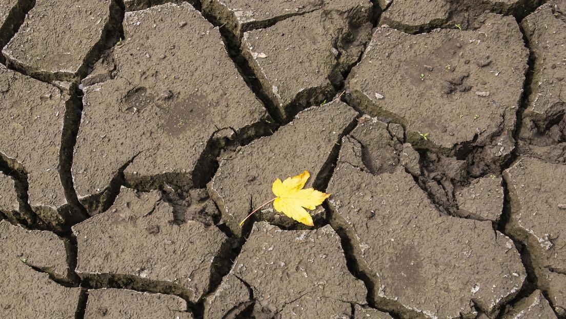 """Advierten que las sequías empeorarán drásticamente en los """"puntos calientes"""" de Europa"""