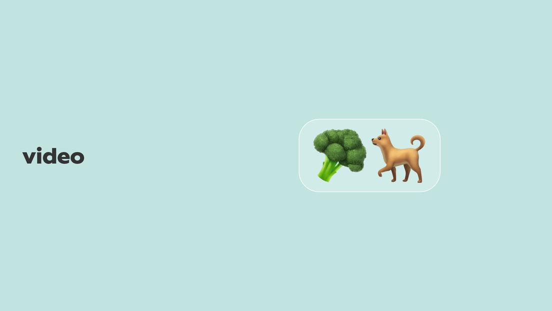 """""""Mi perra es vegetariana por elección"""": el experimento de una 'tiktoker' no sale de la manera prevista y se hace viral"""