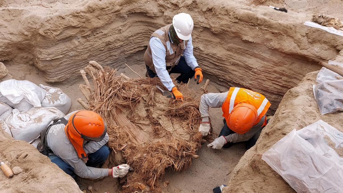 FOTOS: Hallan en Perú una tumba común de 800 años con los restos de ocho personas acompañados de instrumentos musicales y alimentos