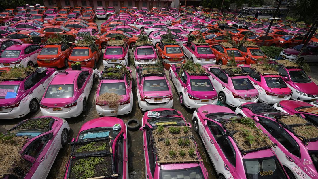 Convierten un 'cementerio' de taxis paralizados por la pandemia en una huerta sobre ruedas en Bangkok (FOTOS)