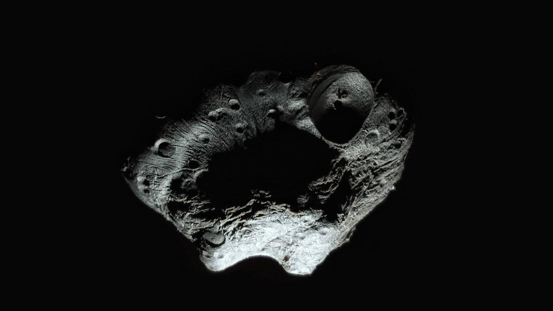 Un asteroide más grande que la pirámide de Guiza se aproxima a la Tierra este viernes a casi 57.000 km/h