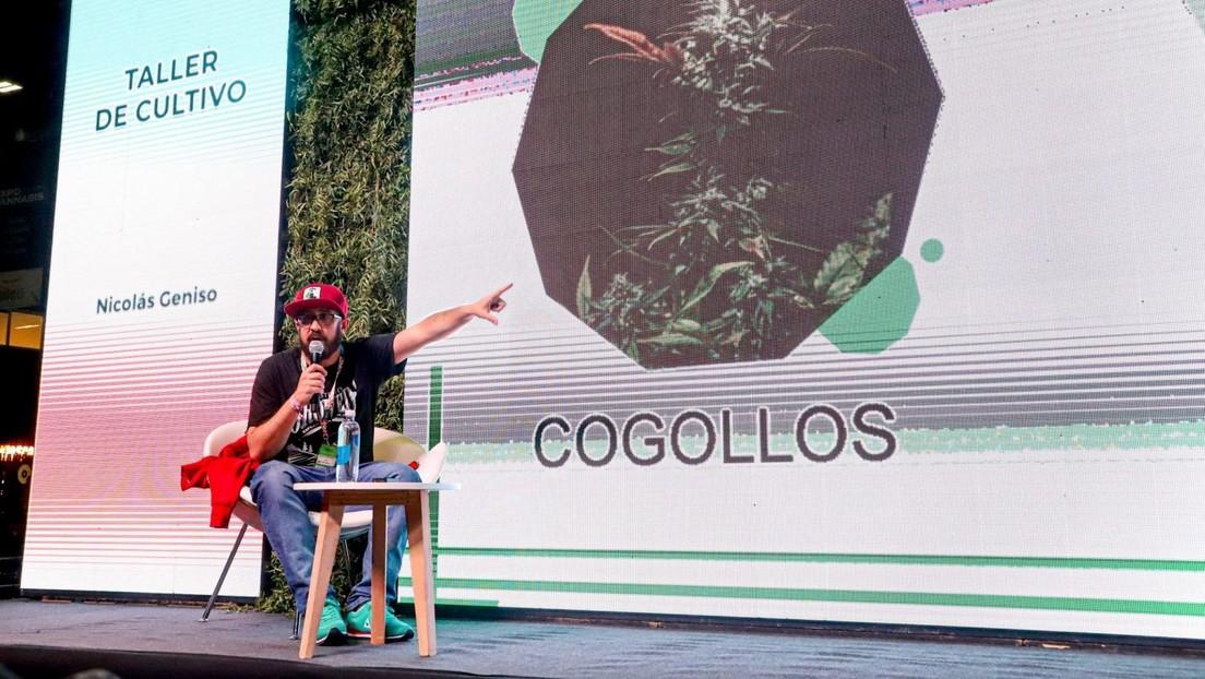 Argentina acoge la exposición más grande sobre la industria del cannabis en América Latina (que avanza contra los prejuicios)