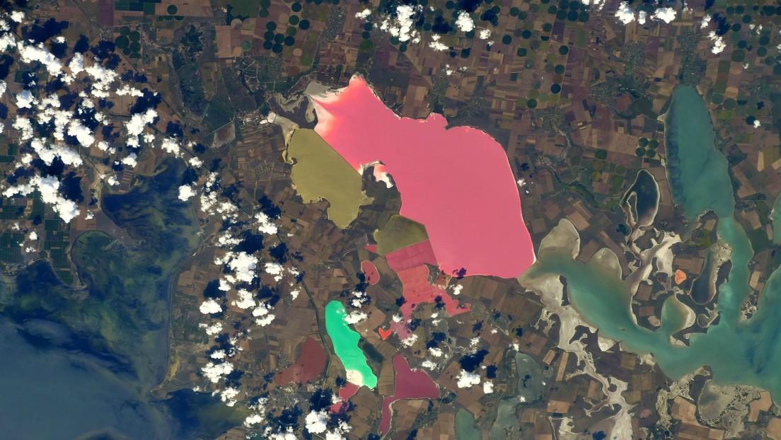 FOTO: Captan desde el espacio un deslumbrante mosaico de lagos multicolores en Crimea