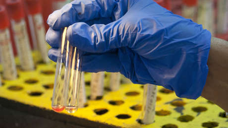 La OMS alerta sobre un brote de fiebre amarilla en Venezuela con siete casos confirmados