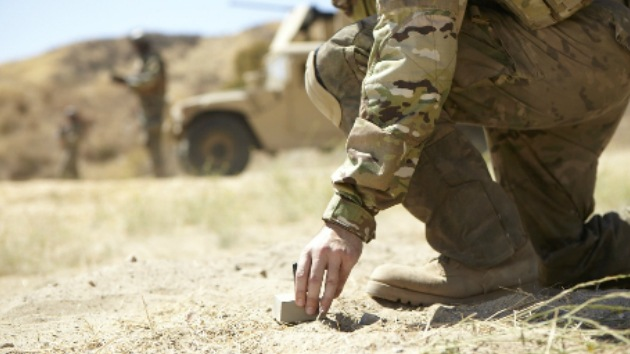 Piedra, papel o... espionaje: El Ejército de EE.UU. invierte en 'rocas espía' inteligentes