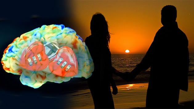 Cupido apunta a la cabeza: ¿Qué pasa en nuestro cerebro cuando nos enamoramos?