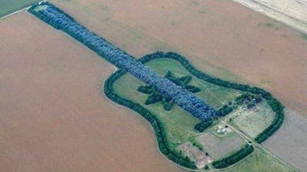 Lugares más asombrosos en Google Map: el 'bosque guitarra' de Argentina