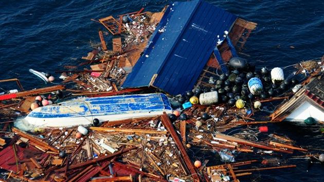 Alerta en EE.UU. por especies invasoras arrastradas desde Japón por el tsunami
