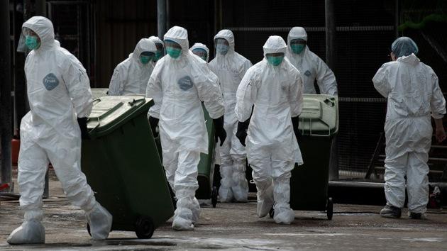 Alertan de una potencial pandemia por nueva cepa de gripe aviar