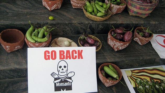 Obama aprueba ley que libera de responsabilidades legales a Monsanto