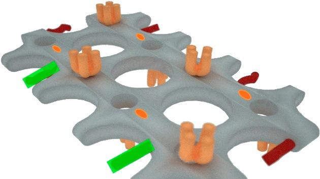 Imprimen en 3D un medicamento contra el cáncer basado en una molécula de ADN