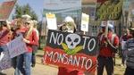 Monsanto provoca la ola de suicidios de granjeros en India – RT