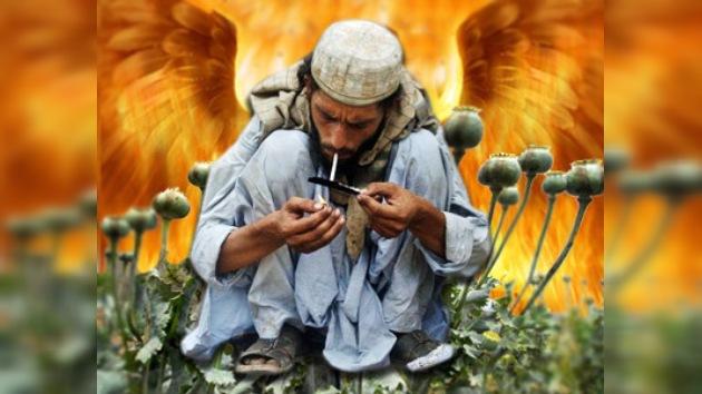 Las flores del mal,  en Afganistán
