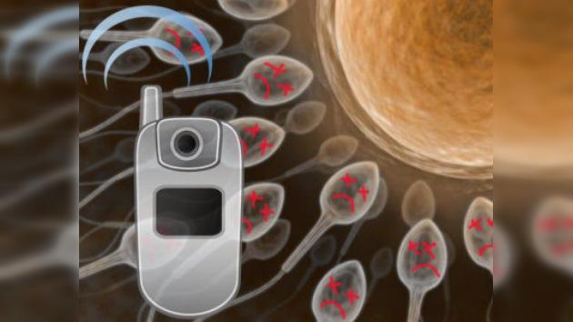Los móviles afectan a la fertilidad masculina