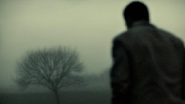 A causa da solidão é a falta de massa cinzenta no cérebro